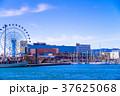 (静岡県)清水港のアトラクション 37625068