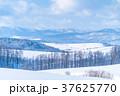 《北海道》美瑛の丘・雪原の大地 37625770