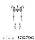 動物 ベクター 顔のイラスト 37627593