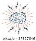 ブレイン 脳 脳みそのイラスト 37627646