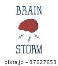 ブレイン 脳 脳みそのイラスト 37627653