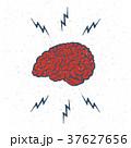 ブレイン 脳 脳みそのイラスト 37627656