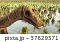 Prehistoric landscape with big diplodoc 3d 37629371
