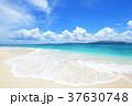 海 ビーチ 砂浜の写真 37630748