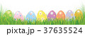 たまご 卵 イースターエッグのイラスト 37635524