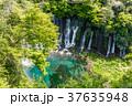 【静岡県】白糸の滝 37635948