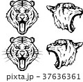 虎のエンブレム 37636361