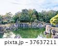 日本の風景 京都 秋の二条城 二の丸庭園 37637211