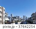 中野新橋 神田川 東京の写真 37642254