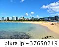 海辺 海 砂浜の写真 37650219