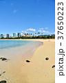 海辺 海 砂浜の写真 37650223