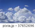 空 雲 入道雲の写真 37652696