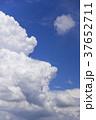 空 雲 入道雲の写真 37652711