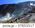 大涌谷 風景 山の写真 37653317
