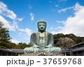 鎌倉大仏 高徳院 神奈川県鎌倉市 2017年12月現在 37659768