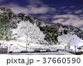 雪 積雪 公園の写真 37660590
