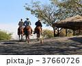 ソチカルコ遺跡を行くカウボーイ  メキシコ 37660726