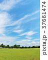 青空 空 雲の写真 37661474