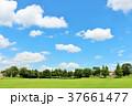 青空 空 雲の写真 37661477