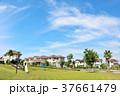 青空 空 住宅地の写真 37661479