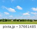 青空 空 雲の写真 37661485