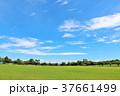 青空 空 雲の写真 37661499