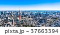 東京タワー 都市風景 空の写真 37663394