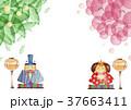 ひな祭り 植物 背景 37663411