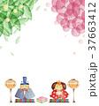 ひな祭り 植物 背景 水彩画 37663412