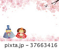 ひな祭り 背景 水彩画 37663416