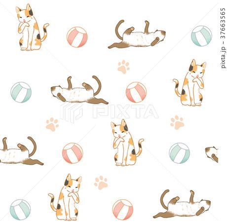 動物 動物学 猫 37663565