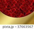 バラ 背景素材 花のイラスト 37663567