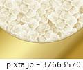 バラ 背景素材 花のイラスト 37663570
