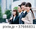 ビジネス 会社員 同僚の写真 37666831