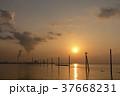 千葉県 江川海岸 電柱の写真 37668231