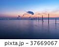 千葉県 江川海岸 電柱の写真 37669067