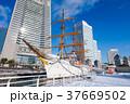 横浜 日本丸 みなとみらいの写真 37669502