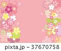 桜 花 ピンクのイラスト 37670758