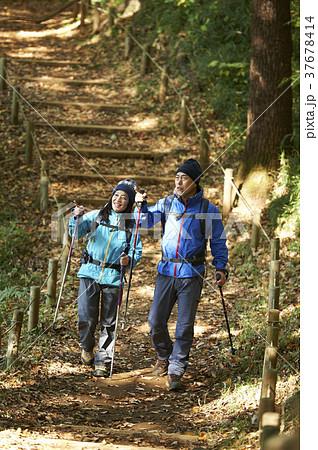 山歩き 37678414