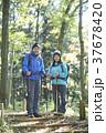 山歩き ハイキング 山の写真 37678420