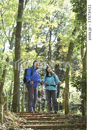 山歩き 37678431