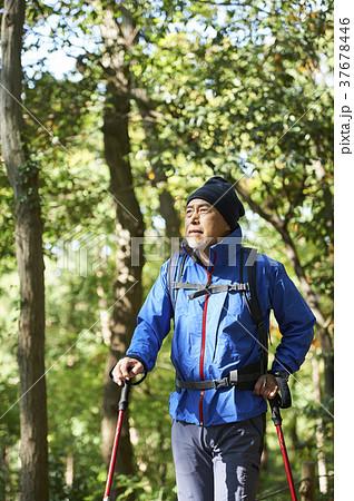 山歩き 37678446