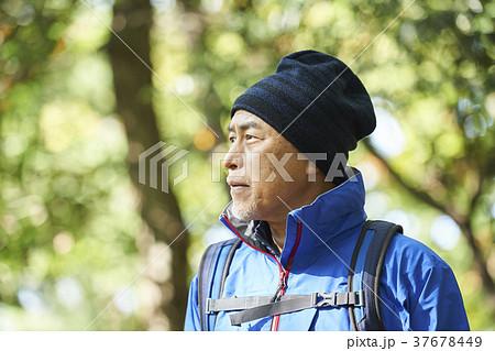 山歩き 37678449