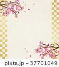 桜 フレーム 桜吹雪のイラスト 37701049