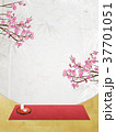 花見 桜 和紙のイラスト 37701051