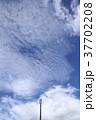 空 青空 雲の写真 37702208