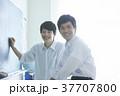勉強をする学生 37707800