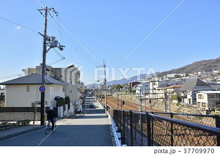 【兵庫県】高級住宅街、芦屋の街並み 37709970