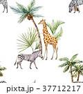 動物 パターン 柄のイラスト 37712217