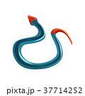 ヘビ 蛇 ベクトルのイラスト 37714252